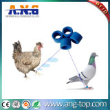 Em4200 RFID Pigeon Chip Boxing rings