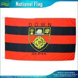 Bandierine irlandesi del nord di Ulster del poliestere di storia della bandiera nazionale dell'Irlanda del Nord (J-NF05F03106)