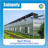 Bajo costo de efecto invernadero de policarbonato sistema hidropónico de tomate