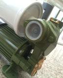 Bomba de água elétrica de escorvamento automático de Wedo 1awzb750 auto