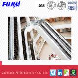 L'intérieur de haute qualité Escalator avec 35 degré 1000mm de largeur de l'étape