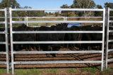 Загородка лошади загородки скотин загородки поголовья горячего DIP гальванизированная