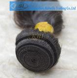 Ombreカラーハバナのねじれのジャンボ組みひもの毛の拡張