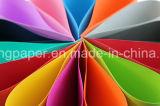 Papel puro del color de la pulpa de madera A4 de la mejor calidad