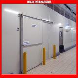 Salle de stockage / salle de stockage froid modulaire / congélateur de viande Débarrone