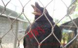 動物のためのステンレス鋼ロープの網