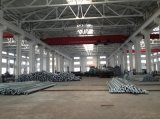 La Cina ha fatto l'alberino d'acciaio galvanizzato dell'acciaio del Palo