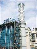 Edificio industrial de la estructura de acero (SS-553)