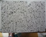 Pré aço pintado de design de mármore (ES001)