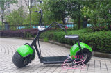 E-Motocyclette mécanique de type de Harley de frein à disque 48V