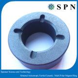 Núcleo aglomerado anisotrópico do ímã de anel da ferrite para o motor