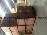 18 mm de contrachapado de madera de pino / contrachapado de abedul / madera de contrachapado