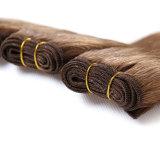 卸売の100%年のバージンのブラジルの毛の拡張