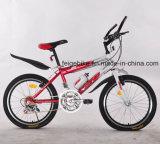 """16 """" /20台の""""若者MTBのバイクのティーネージャーのマウンテンバイク(FP-KDB-17052)"""