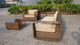 Meubles extérieurs en osier/sofa antique/sofa extérieur (SC-B8916-B)