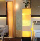 Strato di superficie solido di pietra traslucido della decorazione dell'hotel