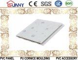 Пластиковый подвесного потолка ПВХ платы передачи данных печати панелей из ПВХ