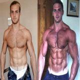 Muscolo sano dello steroide anabolico del testoterone della polvere di Sustanon 250 che guadagna supplemento