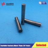 Feste Hartmetall-Arbeits-Leerzeichen von der Zhuzhou Fabrik