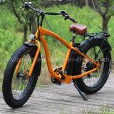 セリウムEn15194が付いている4.6インチの脂肪質のタイヤの電気バイク