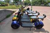 1000W電気自己のバランスのスクーター