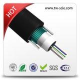 L'acier en forme de tuyau central extérieur de GYXTW câble le câble fibre optique blindé
