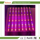 Keisue LED는 전등 설비에 가볍게 증가한다