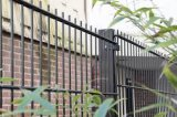 Garden Using Doubles Circle Beautiful Wrought Iron Fence