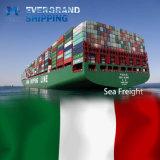Betrouwbare Oceaan & Overzees die van China aan Italië/Rome/Genua/Venetië/Milaan verschepen