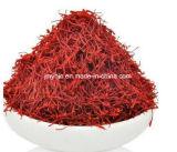 Extrait de safran, 95% Crocin/0.2%-0.4% Safranal bon pour des troubles sanguins