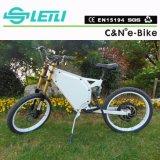 Bici eléctrica Ebike de la bicicleta eléctrica de la potencia verde 48V 1500W