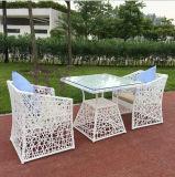 Vector y silla simples de la rota del PE del café de la terraza al aire libre moderna del jardín