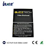 4.3 Zoll LCD-Handelsname-Videokarte