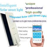 Un'alta lampada tutta da 5500 lumen LED in un giardino solare solare Integrated dell'indicatore luminoso di via illumina esterno
