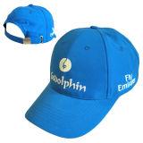 최신 온갖 선전용 모자 및 모자 (JRP044)