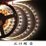 illuminazione dell'interno bianca della decorazione dell'indicatore luminoso di striscia di 5050SMD LED RGB+White+Warm