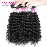 Migliori capelli brasiliani ricci malesi di vendita di Yvonne
