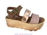 Donne più i pattini del sandalo del cuneo dei pattini di formato con la cinghia