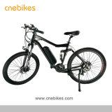 36V 11,6 Ah lithium longue portée pour la vente de vélo de montagne électrique