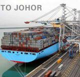 Le transport de marchandises bon marché de l'exportation à Johor de Guangzhou par l'expédition