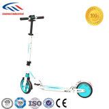 電気Scooter150W