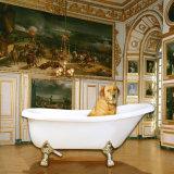 Royal de l'acrylique autoportant salle de bain baignoire chaud classique