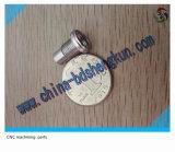 Sterben Soem-kundenspezifisches Präzisions-kleines Metalltiefziehen mit dem Stempeln gebildet durch Xh