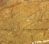 Mattonelle naturali della parete di pietra della foresta pluviale del marmo indiano di colore giallo