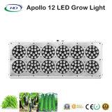 Apolo 12 LED crece ligero para el florecimiento hidropónico