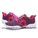 Turnschuh-Sport-Schuhe der neuen Sommer-Herbst-Form-Frauen bequeme