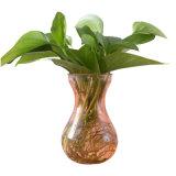 Vaso di vetro di colore