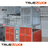 Cage Twin Truemax Sc200/200tdv la construction d'un palan avec la peinture du mât