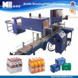Le type économique le plus neuf type d'enveloppe de rétrécissement machine à emballer pour la bouteille d'animal familier