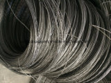 Колпачок клеммы втягивающего реле Bwg 22 черный провод имеющего обязательную силу производства